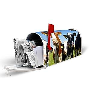 US Mailbox mit Motiv Kühe   Rezension