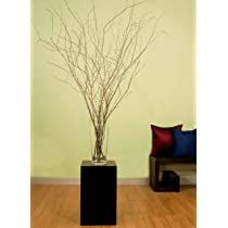 Natural Birch Branches 3-4 Ft Tall