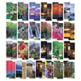 eThought BB-FBV-100 Bible Verse Cards, by - Pack of 100 Bookmark Size Cards - Popular Scripture Memory Verses, Great Gift to Build Faith, Encourage and Share The Gospel, Full Color