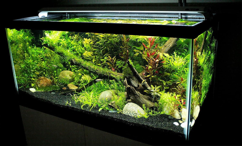 Finnex fugeray aquarium led light plus moonlights 10 inch for Led fish tank
