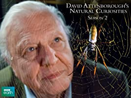 David Attenborough's Natural Curiosities, Season 2