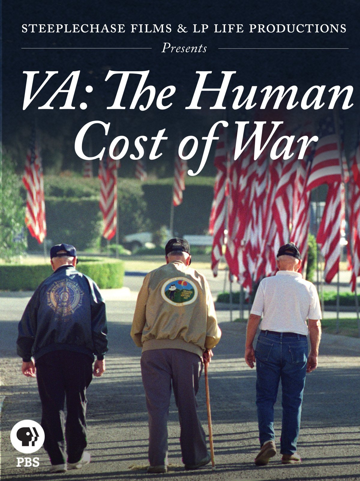 VA: The Human Cost of War on Amazon Prime Video UK