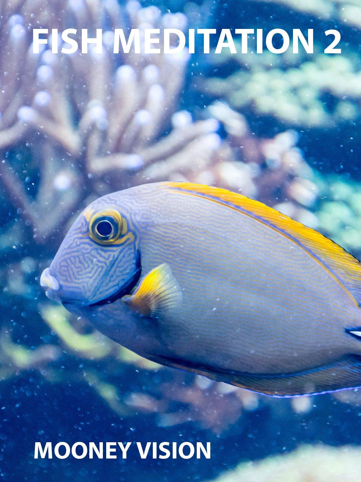 Fish Meditation 2