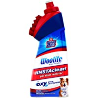 Bissell 1740 Woolite Instaclean Pet with Brush Head Cleaner