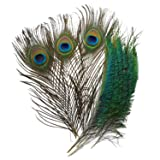 Piokio 40pcs Peacock Feathers 10-12inch and 25pcs Peacocks Sword 12-15inch for DIY Craft for Wedding Party Christmas Decoration