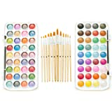 EconoArts Watercolor Paint Set, 72 Opaque Colors (Gouache) - Normal and Pearlescent, 6 Flat, 6 Round, and 2 Basic Brushes (Color: Classic & Pearlescent, Tamaño: 72 colors + 14 brushes)