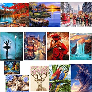 TOCARE Acrylic Adult Paint by Number Kits for Adults Canvas Romantic Countryside Scenes Painting for Home Wall Decor,16x20inch Landscape Pattern -Canvas (Color: Landscape -canvas)