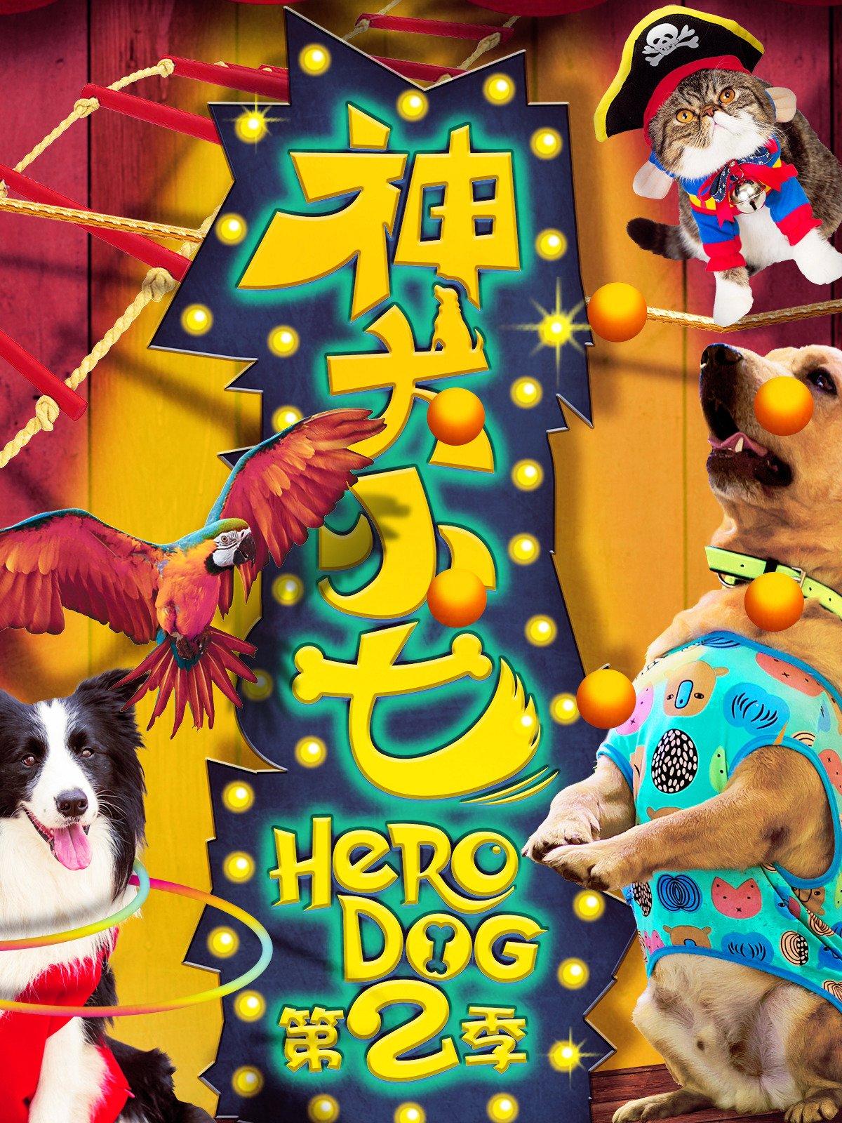 Hero Dog on Amazon Prime Instant Video UK