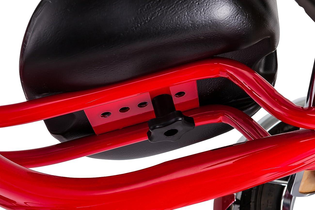 Schwinn Roadster 12-Inch Trike 6