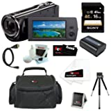 Sony HDR-CX290 8GB Embedded Memory HD Handycam Camcorder with 27x Optical/ 50x Extended Zoom and 2.7-inch LCD Screen in Black + Sony 16GB SDHC + Replacement NP-FV50 Battery + Micro HDMI Cable + Carrying Case + Accessory Kit