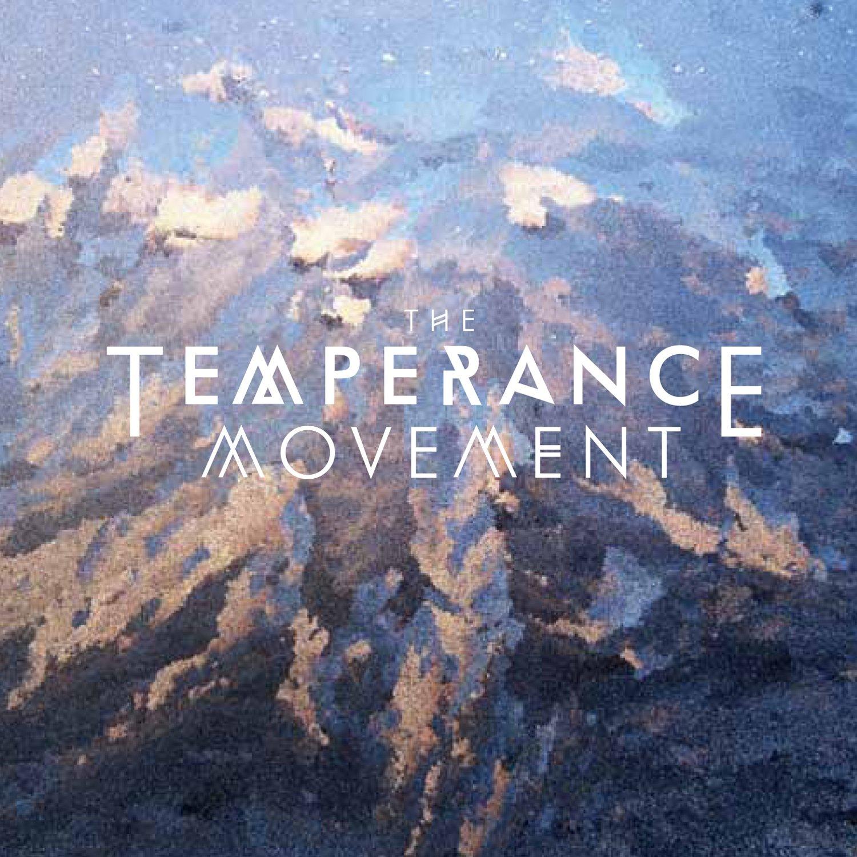 Essay On The Temperance Movement