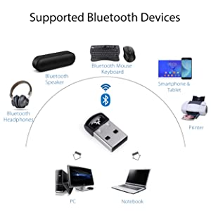 Avantree DG40S USB Bluetooth 4.0 Adapter Dongle for PC Laptop Computer Desktop Stereo Music, Skype Calls, Keyboard, Mouse, Support All Windows 10 8.1 8 7 XP vista [2 Year Warranty] (Color: for Win 10/8/8.1/7/Vista/XP - DG40S)