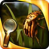 Die Schatzinsel : Das goldene Insekt - Extended Edition