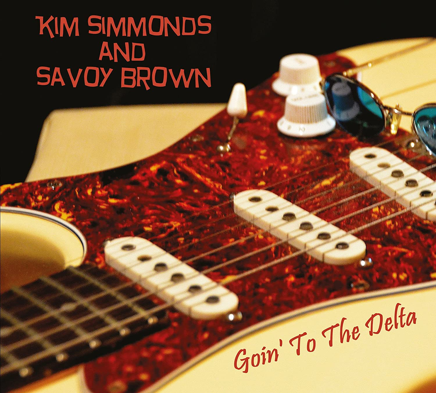 Kim Simmonds / Savoy Brown - Goin' to the Delta 810gQqe2L-L._SL1500_