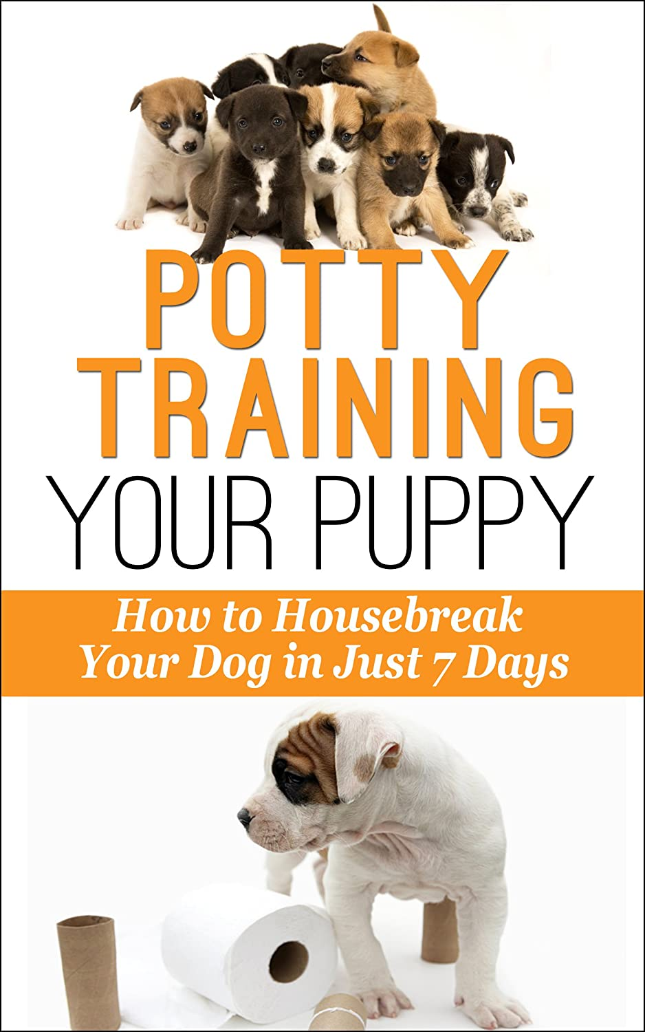 Potty_Training_Your_Puppy