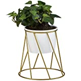 flowerplus Planter Pot Indoor, 4.33 Inch White Ceramic Medium Succulent Cactus Flower Plant Round Bowl with Metal Stand Holder and Plants Sign for Indoors Outdoor Home Garden Kitchen Decor (Golden) (Color: White)