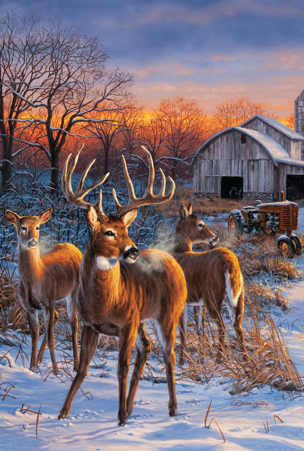 winter sunrise whitetail winter wildlife and wildlife art