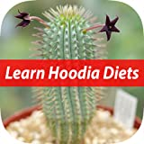 Facts of Hoodia Diet For Beginners
