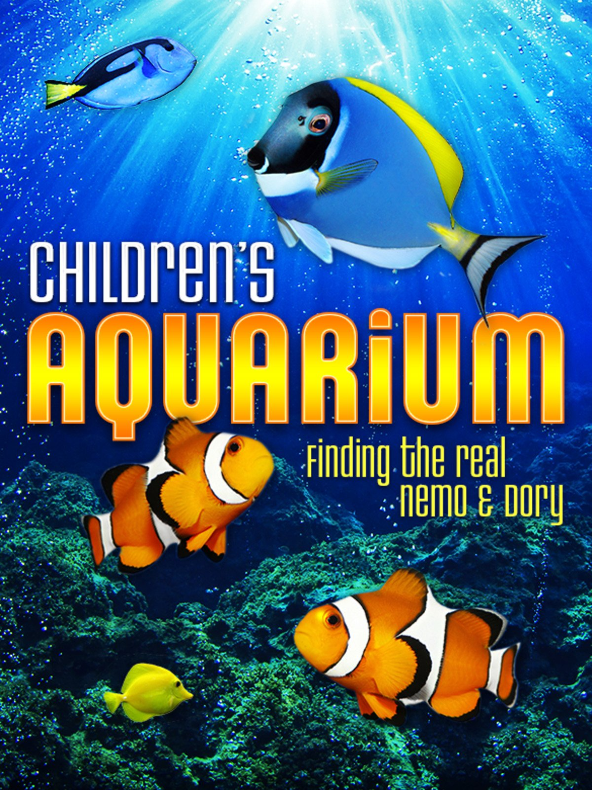 Children's Aquarium: Finding the Real Nemo & Dory