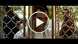 Nature Calls - Trailer