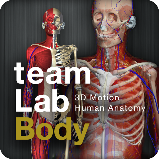 teamLabBody(Kindle Tablet Edition)