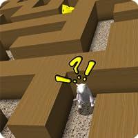 Rat Race Maze