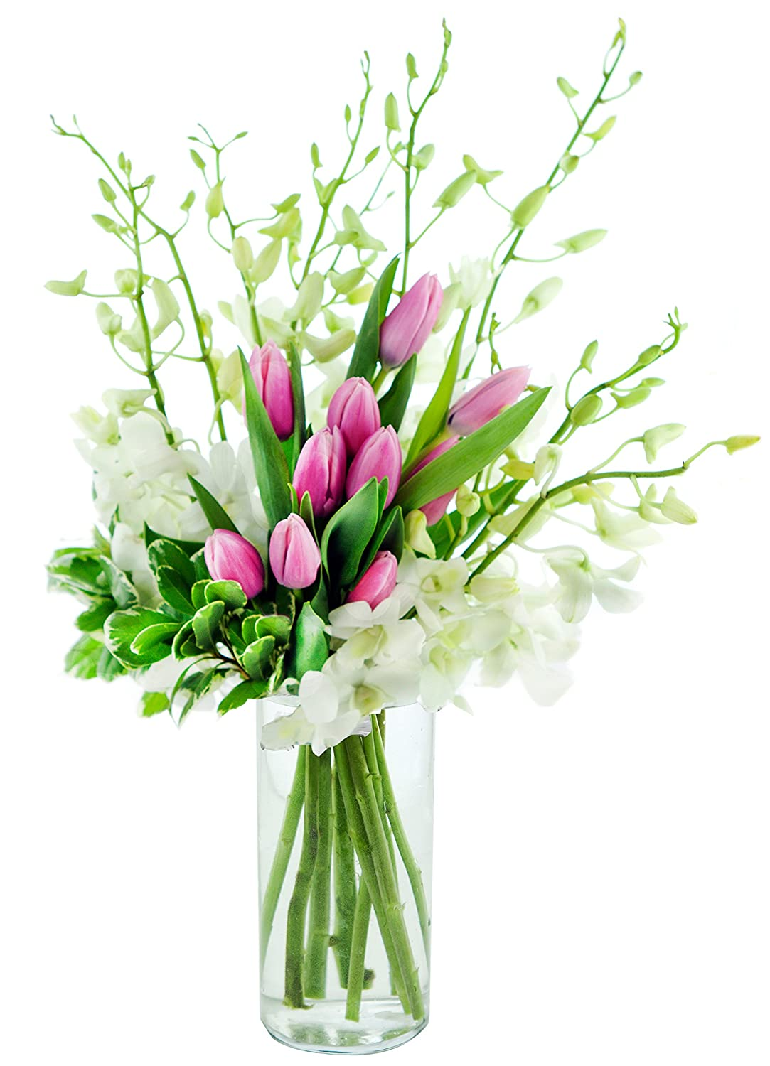 Kabloom Love Notes Pink Tulips and White Orchids with Vase, 2.5 Pound