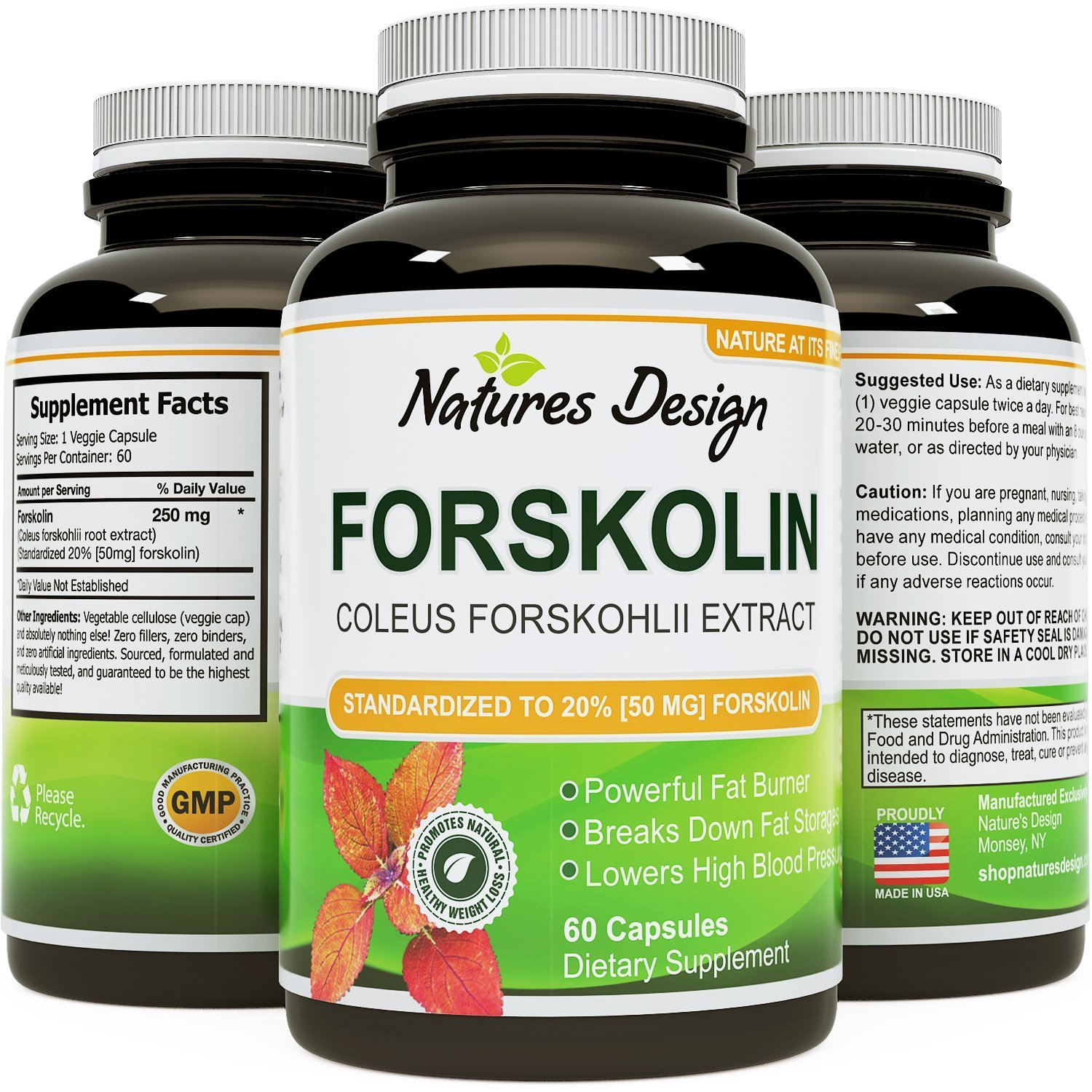 Natures Craft Pure Forskolin Extract - Fat Burning & Metabolism Boosting Weight Loss Supplement - Natural Pills for Women & Men (60 Capsules)