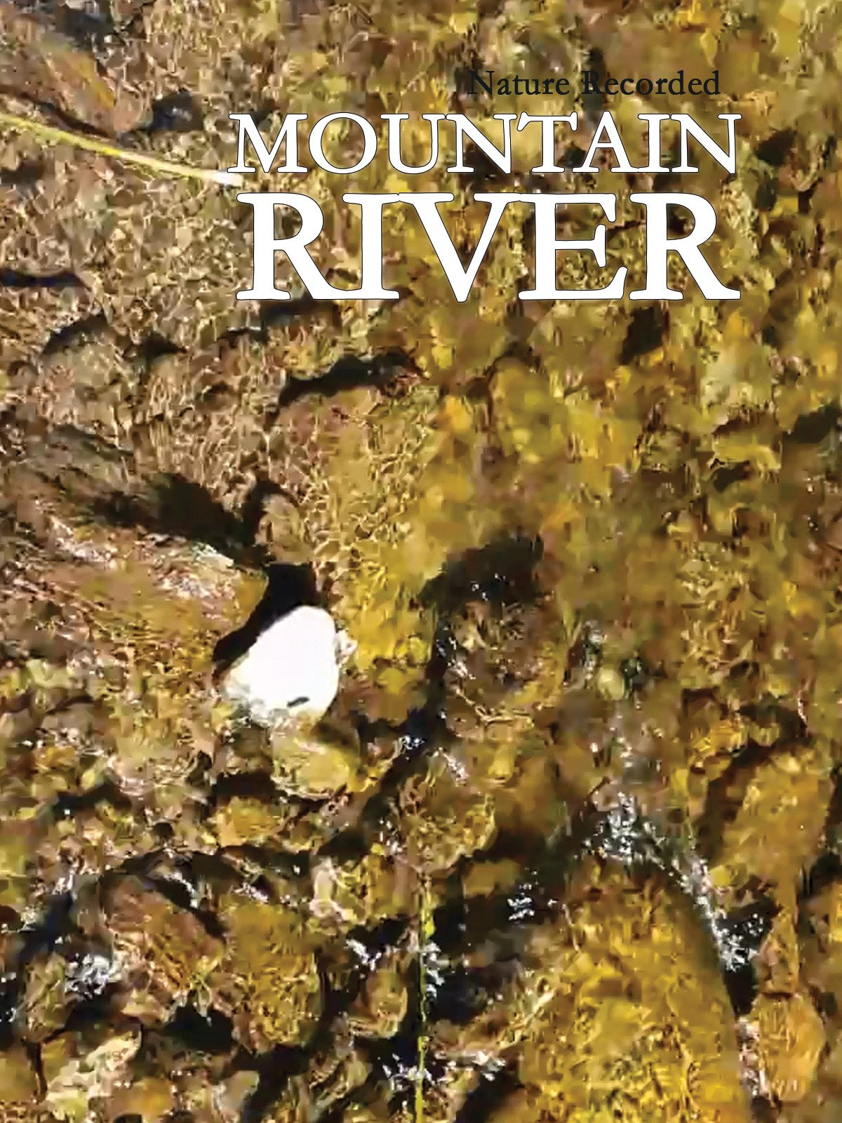 Mountain River Nature Recorded on Amazon Prime Instant Video UK
