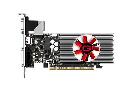 Gainward GT740 Carte Graphique Nvidia GeForce GT 740 993 MHz 1024 Mo PCI-Express