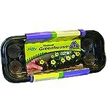 Jiffy 36mm Windowsill Greenhouse 12- Plant Starter Kit (Color: Black with clear dome, Tamaño: Mini)