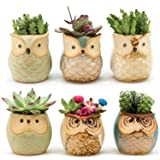 Weierken Mini 6PCS Owl Pot Ceramic Flowing Glaze Base Serial Set Succulent Plant Pot Cactus Plant Pot Flower Pot Container Planter Bonsai Pots with A Hole