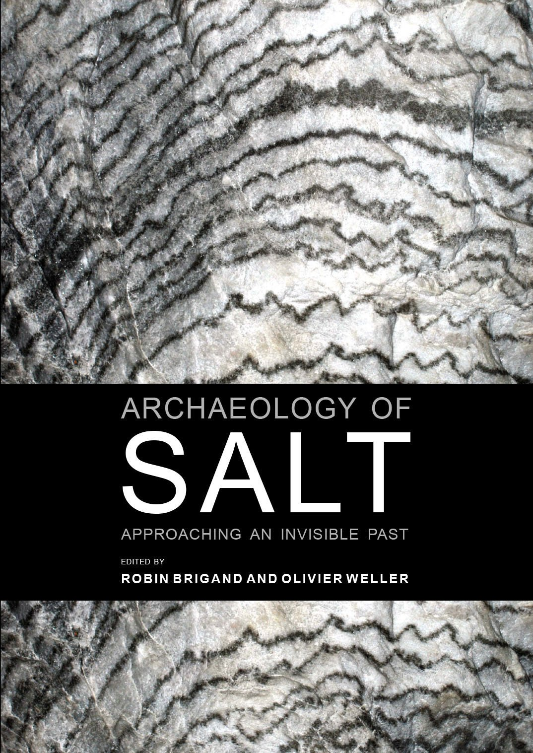 Archaeology of salt [electronic resource] : approaching an invisible past