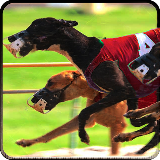 Greyhound Dog Racing 3D (Free Wolf Games compare prices)