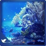 Bluish Fresh Aquarium - Underwater Se...