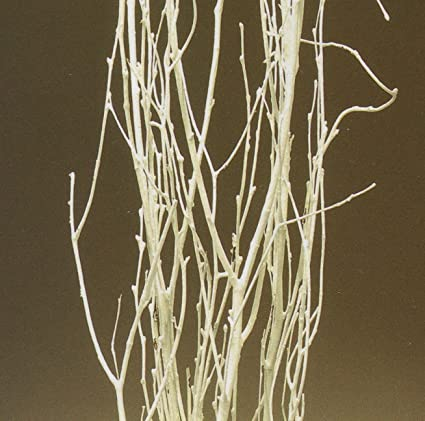 Christmas Tablescape Decor - Decorative Table Top White Birch Branches 3-4 Feet Tall Pack of 6-7 Stems
