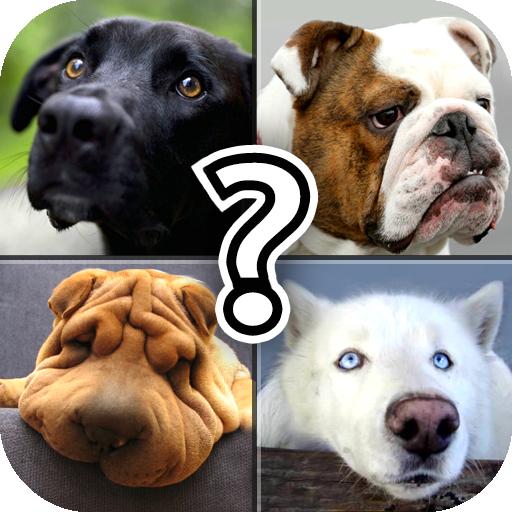 dog-breed-quiz-free