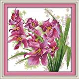 Zamtac Beauty Orchid Printed on Canvas DMC Counted Chinese Cross Stitch Kits Printed Cross-Stitch Set Embroidery Needlework - (Cross Stitch Fabric CT Number: 11CT Picture Printed) (Color: 11CT picture printed)