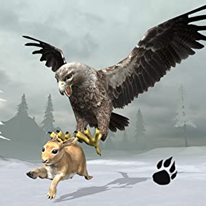 Snow Eagle Simulator by Wild Foot Games