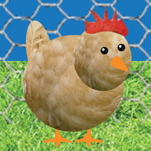 Chicken Pet Game