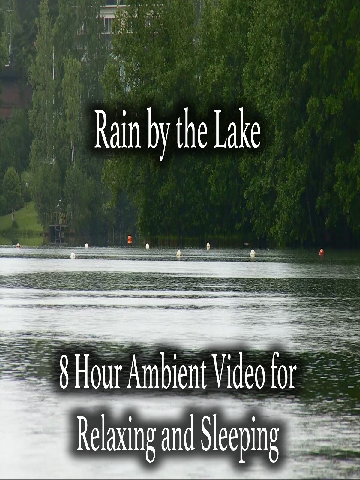 Rain by the Lake 8 Hour Ambient Video for Relaxing and Sleeping