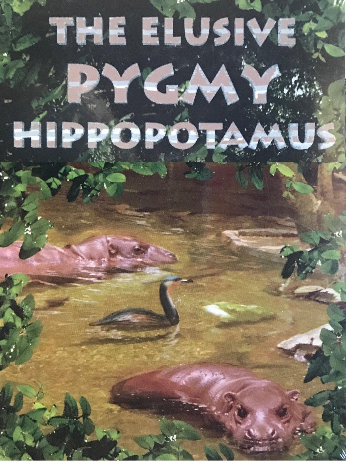 The Elusive Pigmy Hippopotamus
