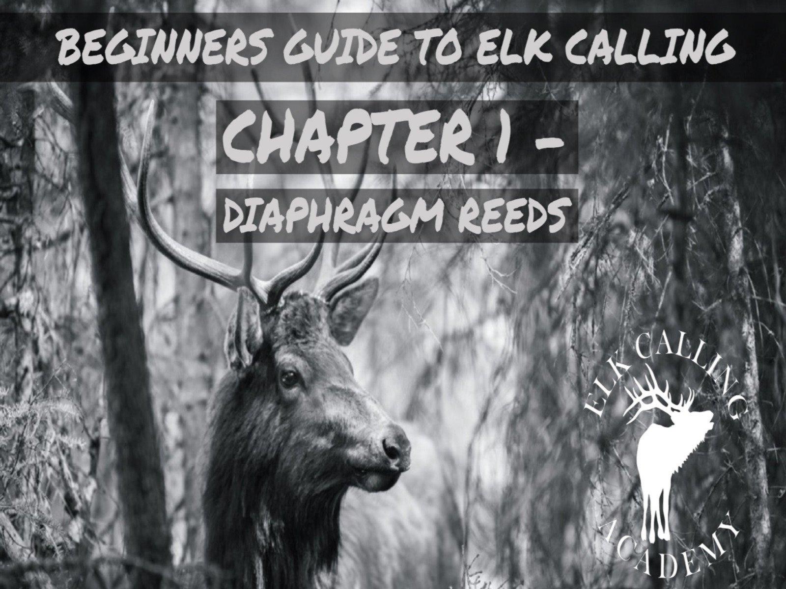 Beginners Guide to Elk Calling - Season 1