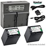 Kastar LCD Dual Fast Charger & 2x Battery for Sony NP-FH100 DCR-DVD92 DVD405 DVD408 DVD610 DVD620E DVD650E HC48 HC96 SR45 SR47 SR65 SR67 SR85 SX40 HDR-CX7 CX12 CX520 HC7 HC9 UX20 HDR-SR10 SR12 XR500E (Tamaño: 2 batteries + 1 LCD dual charger)
