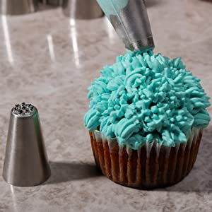 Kayaso Cake Decorating Icing Piping Tip Set, 10 X-large Decorating Tips Stainless Steel Plus 20 Disposable Pastry Bags (Color: Stainless Steel)