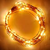 Lycheers Warm White Color on Copper Wire 20ft 6m LED String Lights With 120 LEDS + 6v Power Adapter