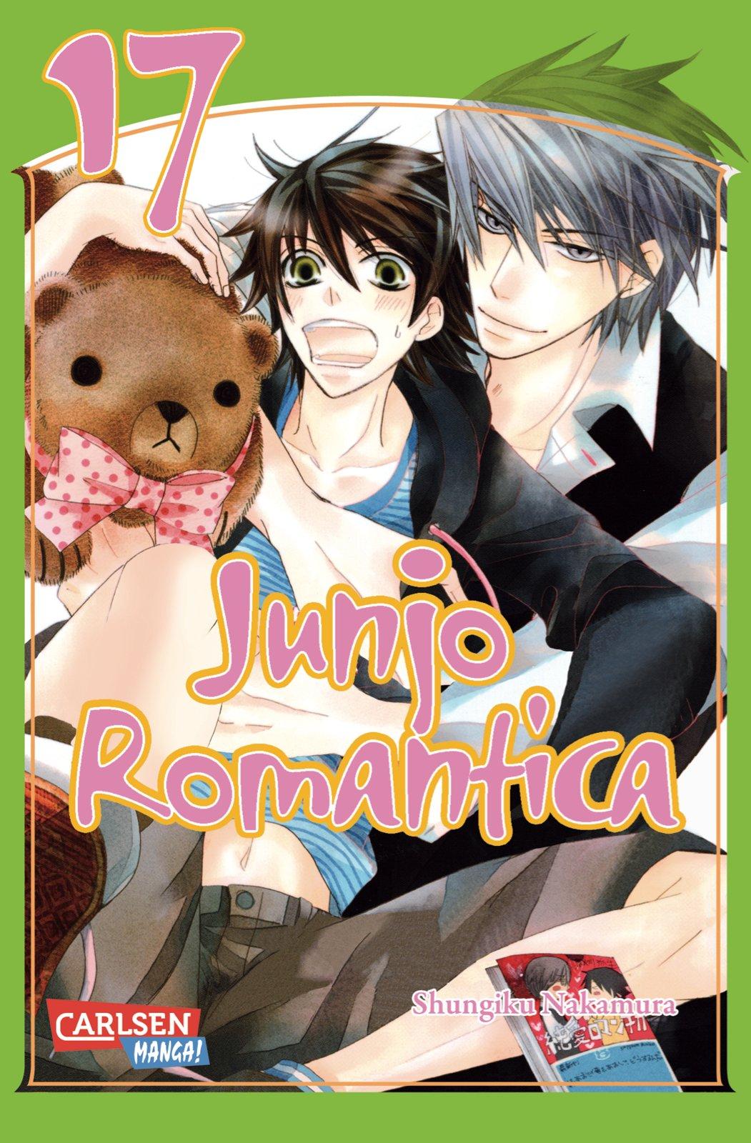 Junjo Romantica, Band 17