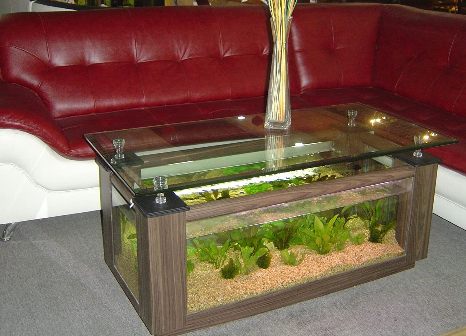 1000 images about aquarium things on pinterest. Black Bedroom Furniture Sets. Home Design Ideas