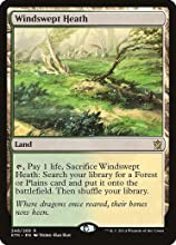 Magic the Gathering - Windswept Heath 248269 - Khans of Tarkir