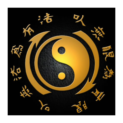 Jeet Kune Do Training App 7